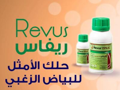 ريفاس Revus الحل الامثل للقضاء على مرض البياض الزغبى ومرض الندوة المتاخرة