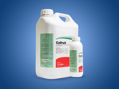 Calfruit